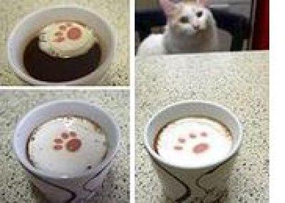 画像1: 三毛猫ボックス 「なごみ」